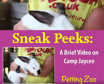 Petting Zoo at Camp Jaycee